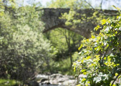 Puentes medievales del río Lozoya
