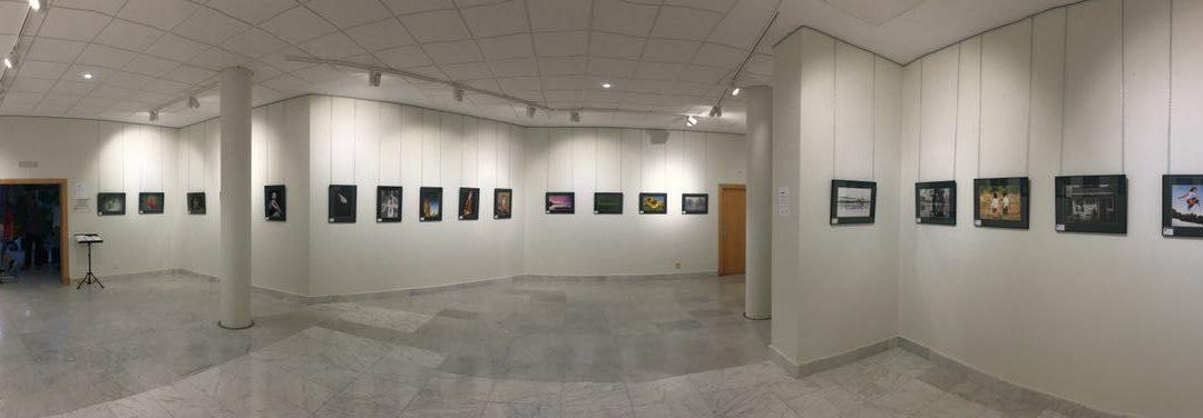Exposición benéfica a favor de la AECC